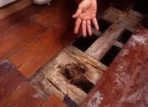 شركة مكافحة النمل الابيض بالرياض | 0532000272