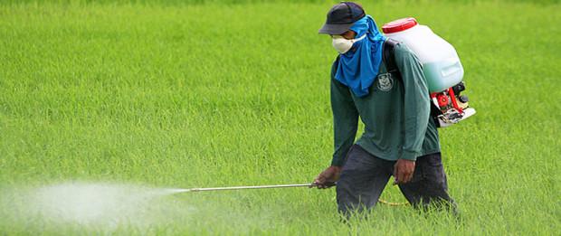 شركة رش مبيدات بالدوادمى 0532000272