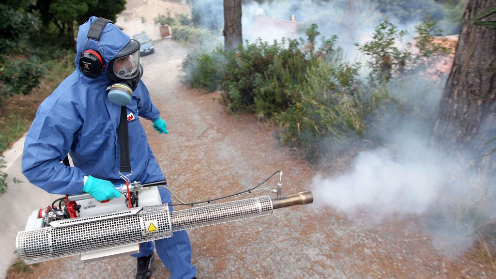 شركة رش مبيدات بتبوك 0502547447